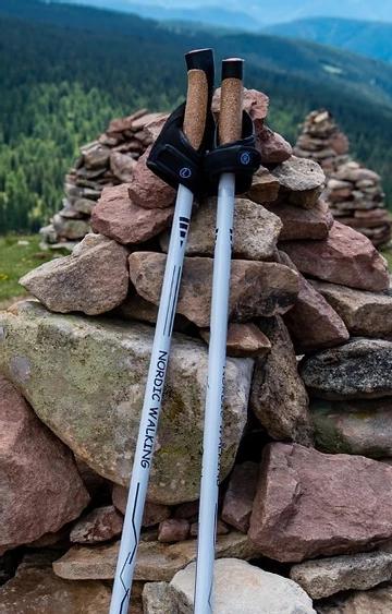 Poles for Parkinson's