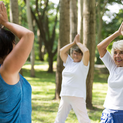 senior women participate in senior fitness sessions